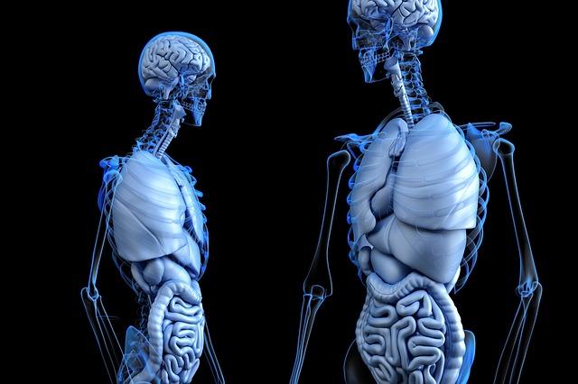 Pylica płuc - objawy i leczenie