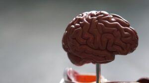 guz mózgu
